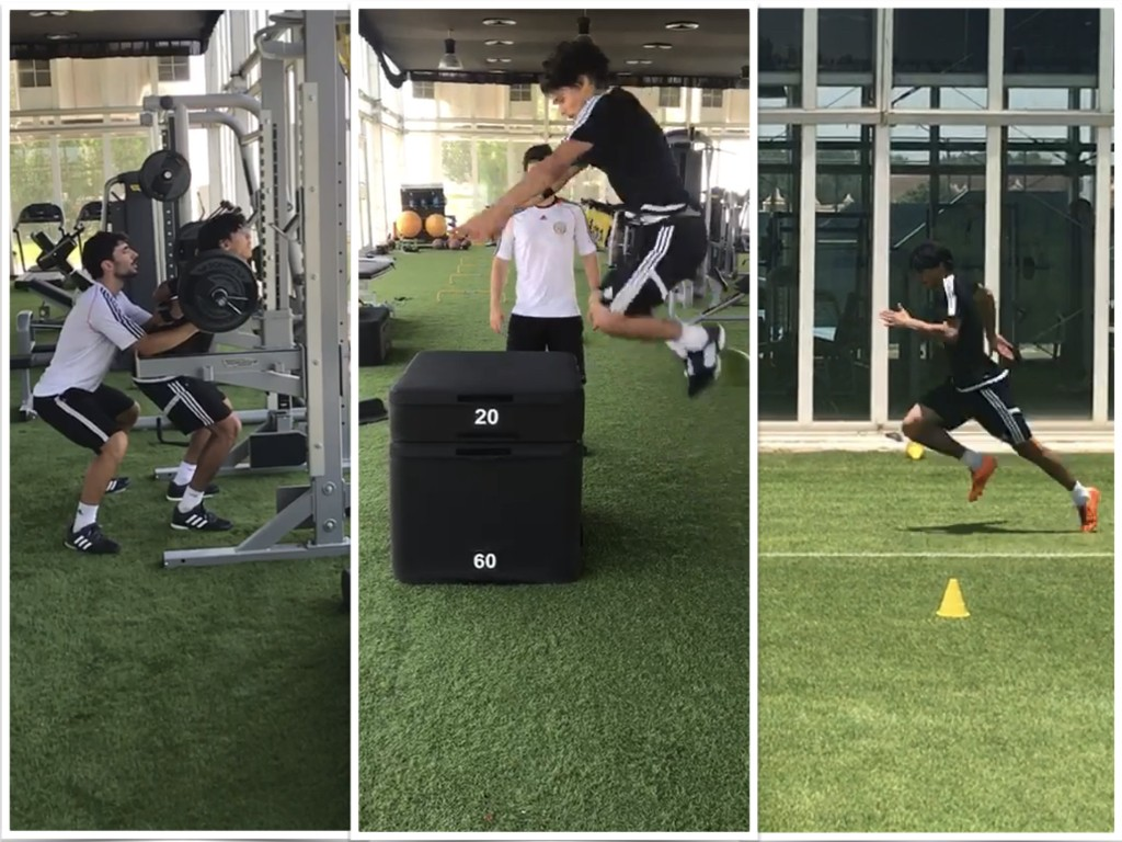 Back Squat, Squat Jump and Sprinting transfers
